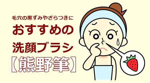 洗顔ブラシでいちご鼻をつるつるにしたい!柔らかい熊野筆がおすすめ☆