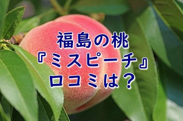 福島の桃ミスピーチの口コミは?特徴(甘味や食感)もご紹介