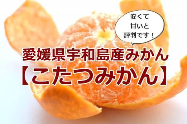 みかんの通販で人気おすすめの愛媛宇和島産!楽天【こたつみかん】が安い甘いと評判です!