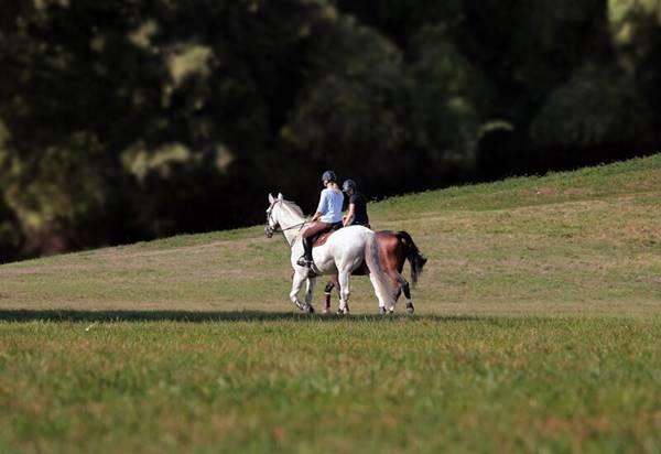 体験ギフト「乗馬」をプレゼント