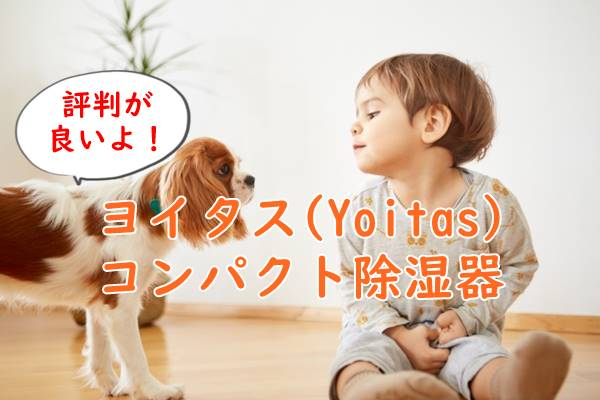 ヨイタス(Yoitas)除湿器の口コミは?使い方は簡単。電気代も安い!